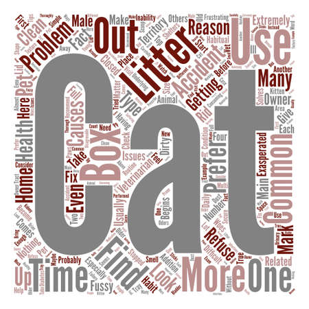 habitual: What To Do About Litter Box Accidents text background word cloud concept