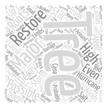 When to Restore a Tree After a Hurricane text background word cloud concept