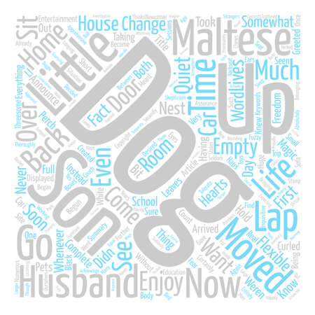 Maltese Magic text background word cloud concept