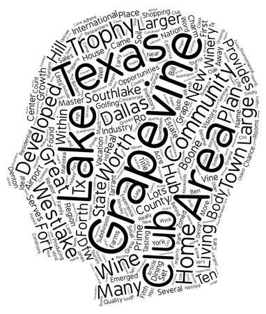 larger: Grape Vine Lake Texas text background wordcloud concept Illustration