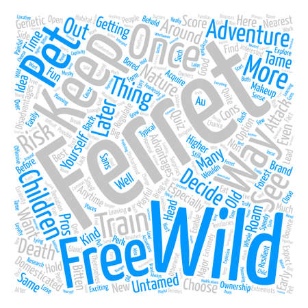 Wild ferrets text background word cloud concept Illustration