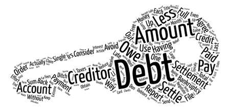 What Is Debt Settlement Word Cloud Concept Text Background Illustration
