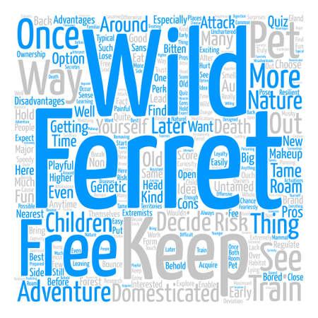ferret: wild ferrets Word Cloud Concept Text