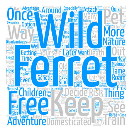 wild ferrets Word Cloud Concept Text