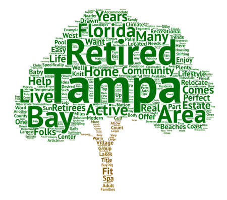 temperate: Retirement Homes in Tampa Bay text background word cloud concept