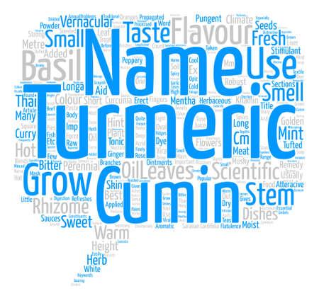 Spices Turmeric Cumin Mint And Sweet Basil text background word cloud concept Ilustração
