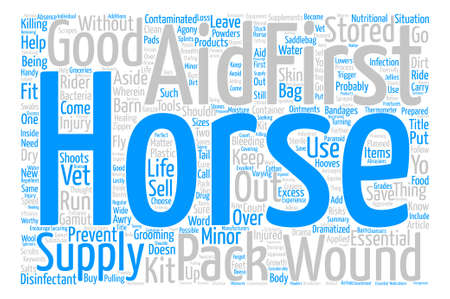 gamut: Horse first aid pack text word cloud concept.