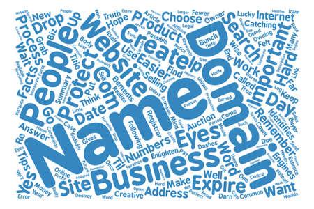 Your Domain Just the Facts Word Cloud Concept Text Background Ilustração