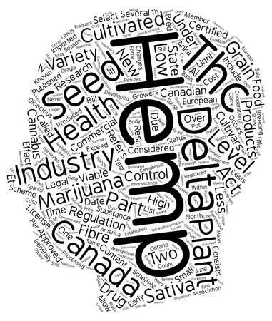 cannabis sativa: INDUSTRIAL HEMP Cannabis sativa Part 2 text background wordcloud concept
