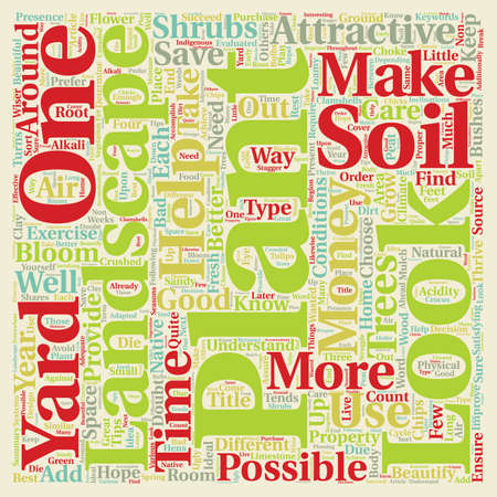 How to make your landscape look good text background wordcloud concept Illustration