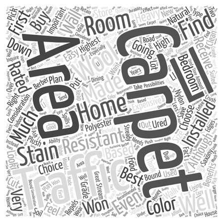 Juiste tapijt voor uw huis Word Cloud Concept