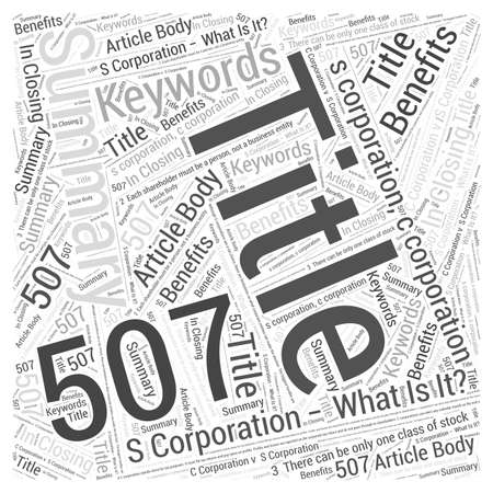 S Corporation What Is It Word Cloud Concept