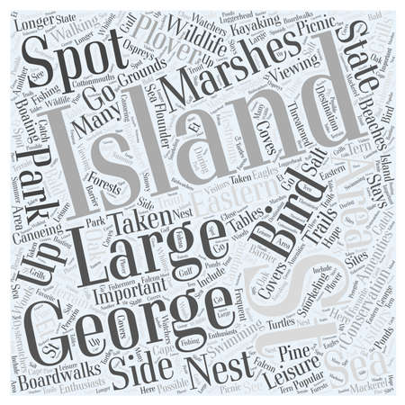 side viewing: St George island Word Cloud Concept