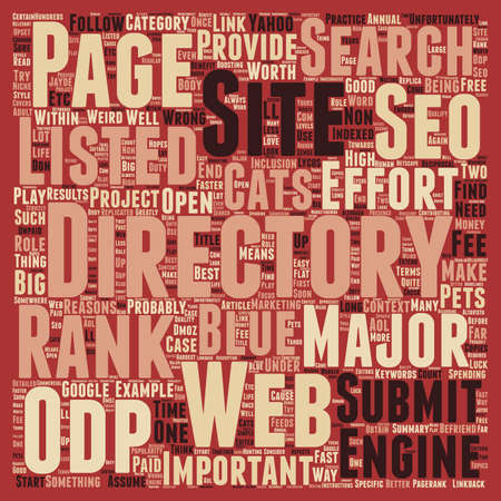 role play: SEO Best Practice Befriend The Directories text background wordcloud concept