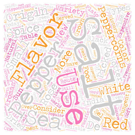 Salt and Pepper A New Perspective text background wordcloud concept
