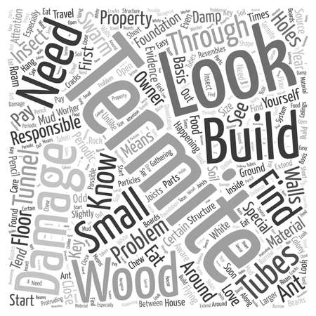 happening: Termite Damage Word Cloud Concept Illustration