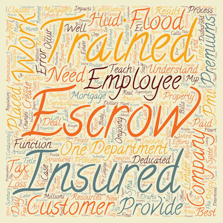 Teach Employees Why and not just How text background wordcloud concept