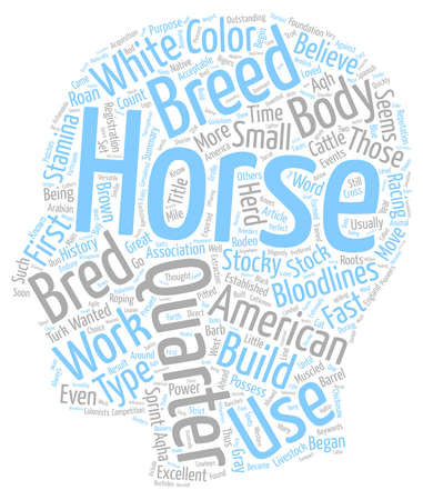 The American Quarter Horse text background wordcloud concept Illustration
