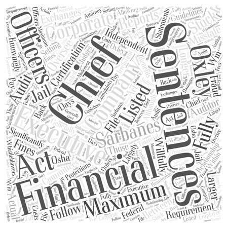 oversee: What is the Sarbanes Oxley Act Word Cloud Concept Illustration