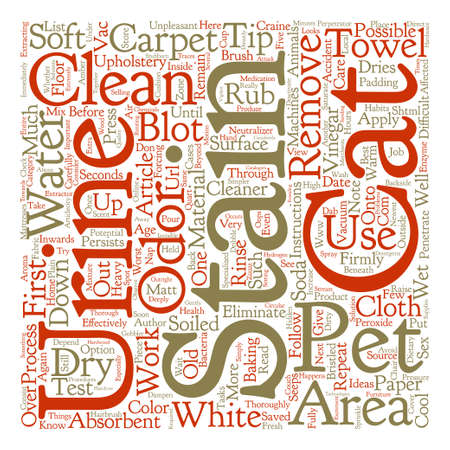 seeps: How to Clean Cat Urine text background word cloud concept Illustration