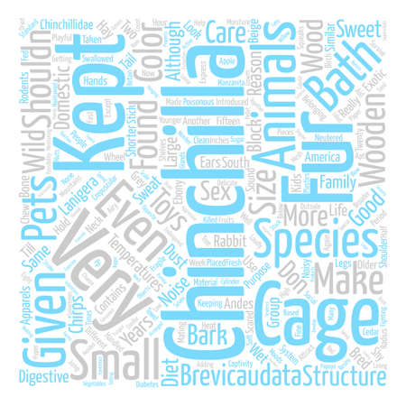 Chinchilla text background word cloud concept Illustration
