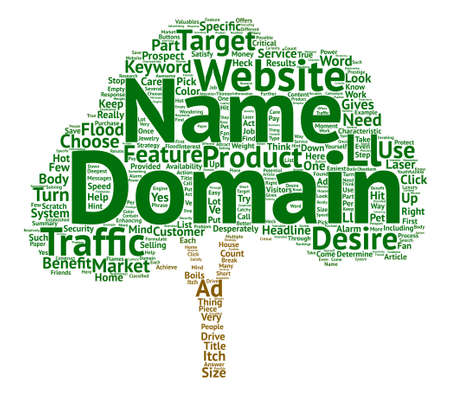 prospects: Choose A Domain Name That Floods Traffic To Your Website Word Cloud Concept Text Background