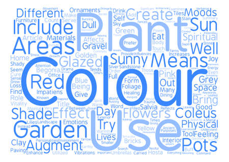 Colour in the Garden Word Cloud Concept Text Background