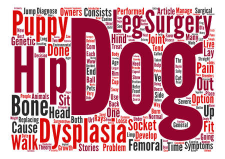 dysplasia: Hip Dysplasia text background word cloud concept