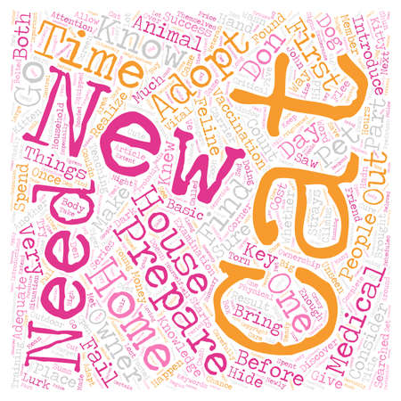 Your New Cat Why Are the First 24 Hours So Important Part 3 text background wordcloud concept