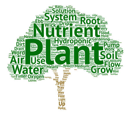 The Power of Thoughts on Plants and Water text background word cloud concept Illustration