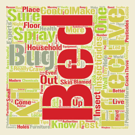 bed bugs how to kill text background word cloud concept