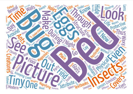 bed bugs pictures text background word cloud concept