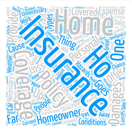 An Insight Into Homeowner s Insurance Word Cloud Concept Text Background Ilustrace