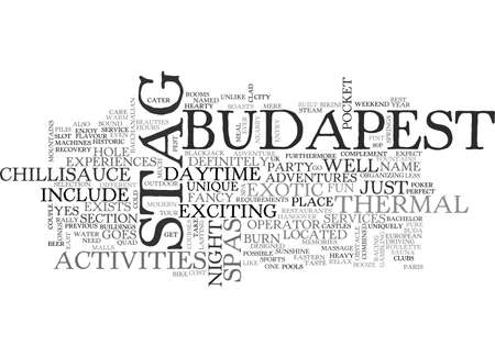 A BUDAPEST STAG DO WITH AN EASTERN EUROPEAN FLAVOUR TEXT WORD CLOUD CONCEPT Иллюстрация