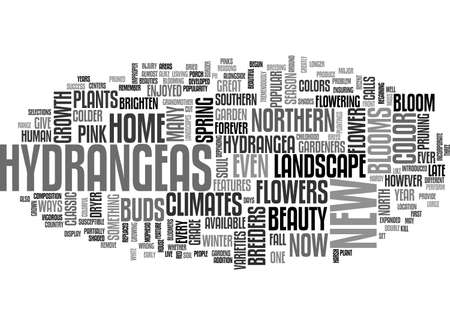 A CLASSIC SOUTHERN BEAUTY NOW BLOOMS IN THE NORTH TEXT WORD CLOUD CONCEPT