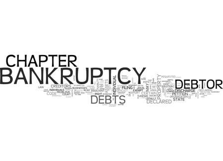 excess: A GUIDE TO CHAPTER BANKRUPTCY TEXT WORD CLOUD CONCEPT