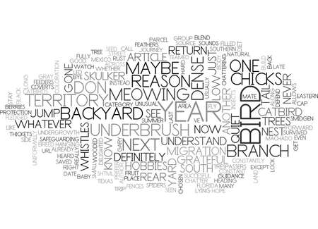 BACKYARD BIRD THE CATBIRD TEXT WORD CLOUD CONCEPT