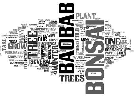 BAOBAB BONSAI TEXT WORD CLOUD CONCEPT