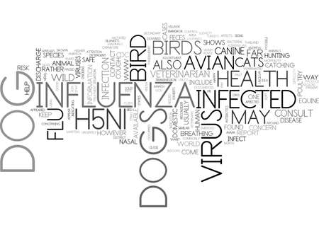 ARE DOGS SAFE FROM THE BIRD FLU TEXT WORD CLOUD CONCEPT
