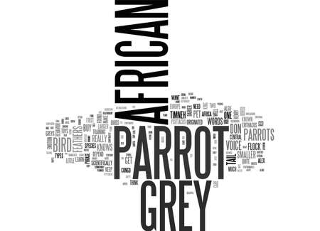 AFRICAN GREY PARROT ONE OF THE GREATES SPECIES OF PARROTS TEXT WORD CLOUD CONCEPT