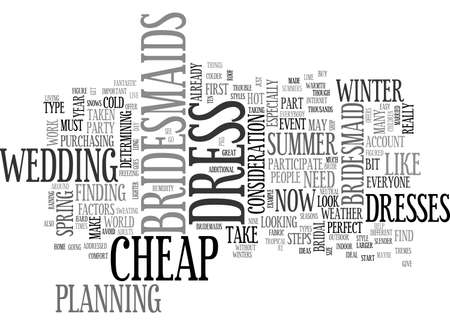 BEFORE YOU BUY A BRIDESMAID CHEAP DRESS TEXT WORD CLOUD CONCEPT