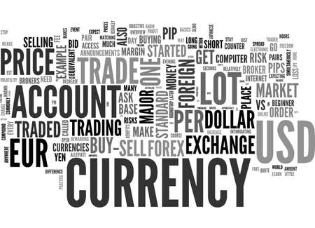BEGINNER S OVERVIEW OF FOREIGN CURRENCY EXCHANGE TEXT WORD CLOUD CONCEPT