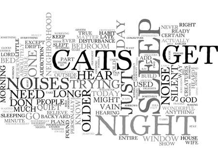 silent: A SILENT NIGHT NOT AT MY HOUSE TEXT WORD CLOUD CONCEPT Illustration