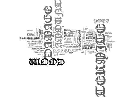 AMORGOS AND ITS HISTORY TEXT WORD CLOUD CONCEPT