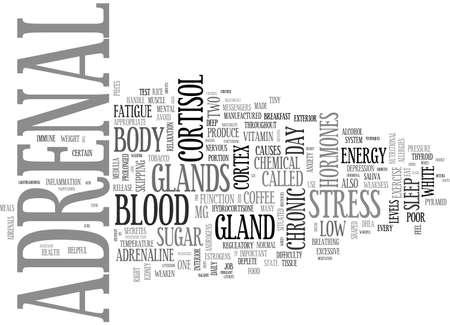 adrenal: ADRENAL FATIGUE TEXT WORD CLOUD CONCEPT Illustration