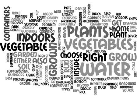 AN INSIDE LOOK AT CAMECO S SMITH RANCH URANIUM FACILITY TEXT WORD CLOUD CONCEPT