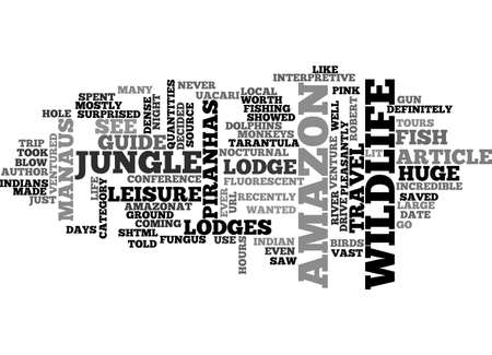 AMAZON JOURNEY AFS JOURNAL TEXT WORD CLOUD CONCEPT