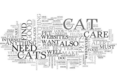 WHY DO YOU NEED CAT CARE WEBSITES TEXT WORD CLOUD CONCEPT Reklamní fotografie - 79579956