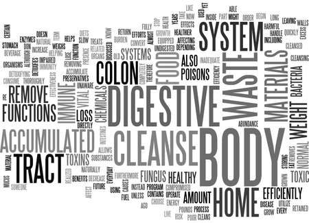 BENEFITS OF THE HOME CLEANSE TEXT WORD CLOUD CONCEPT Imagens - 79579999