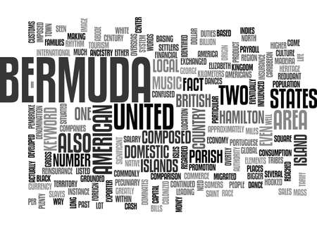 BERMUDA TEXT WORD CLOUD CONCEPT